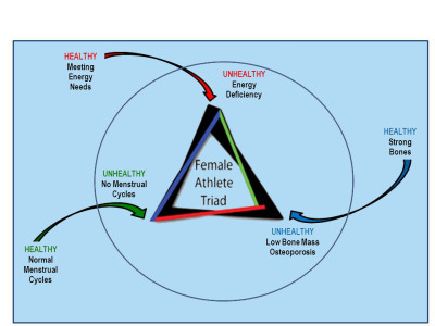 female athelete triad