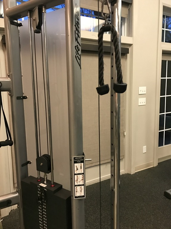 in the gym weights