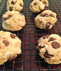 oatmeal peanut butter coconut chocolate chip cookies