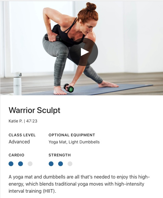 lifetime warrior sculpt