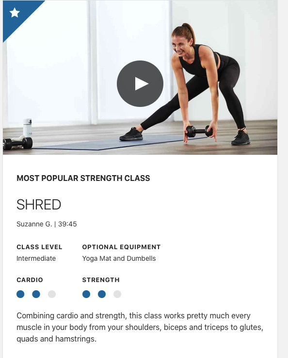 lifetime shred workout